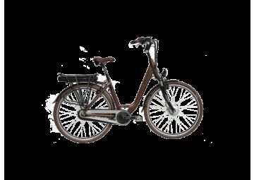Van Limpurg Carwin Bafang front wheel