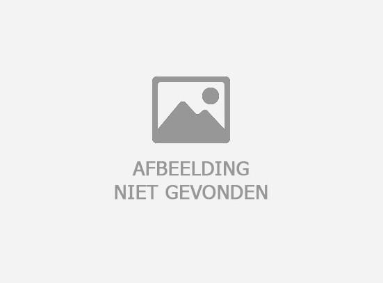 Popal Daily Dutch Prestige N7 RB ND :: Mat Zwart :: 28 inch / 50 cm